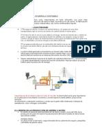 Resumen Uso Del Carbon y Desarroollo Sostenible