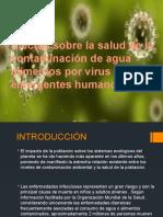 Efectos Sobre La Salud de La Contaminación De