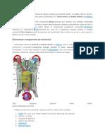 Modul de funcționare al motorului termic