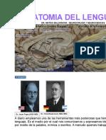 Anatomia Del Lenguaje