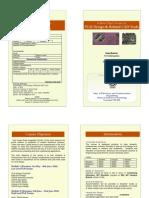 VLSI Brochure 2010