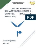Portefólio Gym MAURO