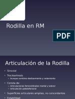 Rodilla RM