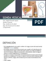 SONDA-VESICAL.pptx