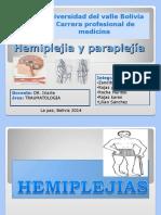 Paraplejia y Hemiplejia