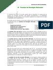 Cap. 4.1 - Puente Losa de Ho Ao