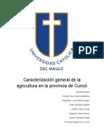 Caracterizacion de la agricultura de la provincia de Curico