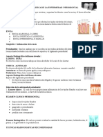 Interpretación Radiográfica de La Enfermedad Periodontal