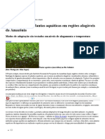 Adapta - 2011 - Adapta Pesquisa Plantas Aquáticas Em Regiões Alagáveis Da Amazônia Modos de Adaptação São Testados Em Níveis de Alagamen