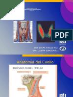 Anatomía de Tiroides y Gammagrafia.