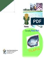 Commodityroadmap Tilapia