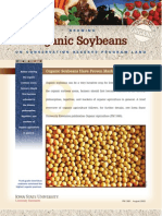 Growing Organic Soybeans on Conservation Reserve