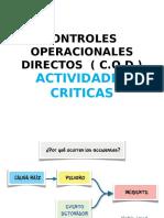 Controles  Operaciones  Críticas.ppt