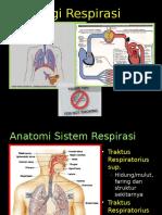 fisiologi-respirasi 2