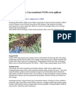 Fungsi PGPR Dan Cara Membuat PGPR Serta Aplikasi Ke