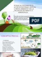 Enfoque de Sistemas en El Manejo de Ecosistemas