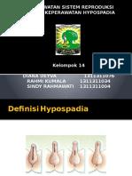 Askep Hypospadia Kel 14 a'13 Genap