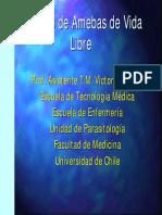 AMEBAS.pdf