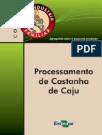 Castanha de Caju