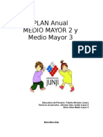 Plan Anual 2010 m Mayor 2-3 (7)