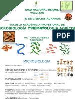 Bacterias - 1