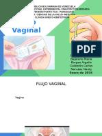 Flujo Vaginal 1