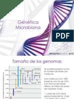 GeneticaMicrobiana A