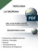 1. La Neurona