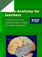 Neuro Anatomy for Teachers 1207061151339725 3