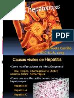 Virus Hepatotropos