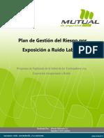 3.Plan de Gestión Del Riesgo Por Exposición a Ruido Laboral (TIPO)