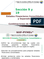 Sección 9 y 19 Niif Pyme