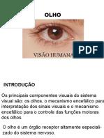 8-olho-e-visao-humana.pptx