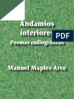 Andamios interiores - Manuel Maples Arce