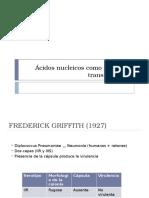 Ácidos nucleicos como principio transformante.pptx