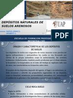SUELOS ARENOSOS.pptx