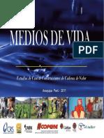 CaseStudyPeru Spanish