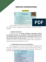 DERMATO - DERMATOSES ZOOPARASITÁRIAS