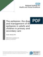 Nice Guidelines Epilepsy
