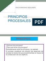 Principios Procesales Peru