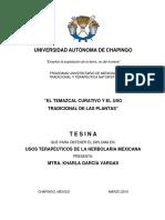 Temazcal
