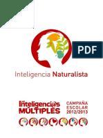 Las Inteligencias Múltiples (NATURISTA) - Fundación MAPFRE