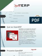 Open ERP wSanchez