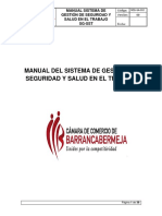 Manual de SGSSO