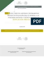 Etapas_aspectos_INGRESO_EMS.pdf