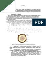 Caract. físicas - mecánicas.pdf