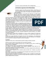 Cucarachas y Evolución