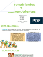 Micronutrientes y Macronutrientes (1)