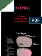 100 Seguro en Laminillas (histologia)