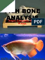 3b. Fish Bone Analysis